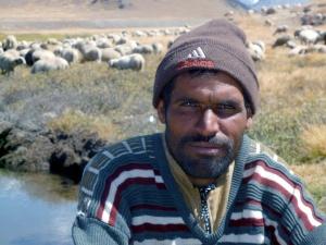O Pastor de Ovelhas