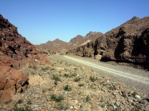 "A estrada no ""wadi"""