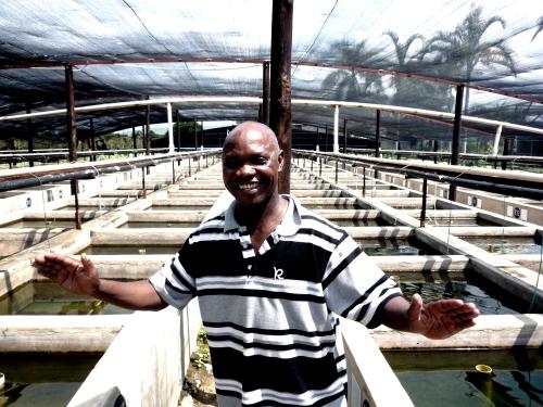 Na fazenda de peixes tropicais