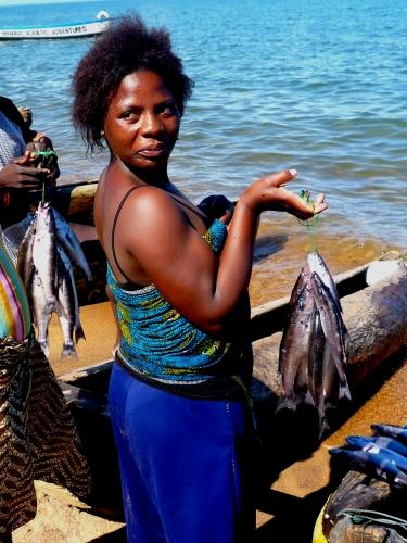 A moça e os peixes