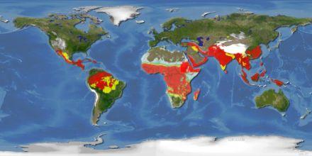Mapa da Malária no Mundo