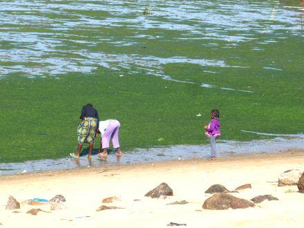 Crianças na Praia - Costa do Sol